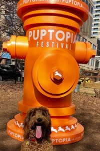 A cute dog poses with the Puptopia Fire Hydrant large product replica